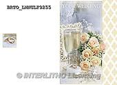 Alfredo, WEDDING, HOCHZEIT, BODA, photos+++++,BRTOLMNULF9255,#W#