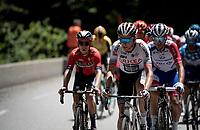 Warren Barguil (FRA/Arkea-Samsic)<br /> <br /> Stage 8: Cluses (FRA) to Champéry (SUI)(113km)<br /> 71st Critérium du Dauphiné 2019 (2.UWT)<br /> <br /> ©kramon