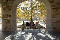 cloister at Rhodes College, Memphis,
