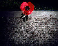 A remembrance poppy on a gravestone marked with names of German soldiers killed during World War I at the German war cemetery at Langemark near Ypres.