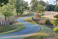 A country road located in Albemarle County, Virginia. Photo/Andrew Shurtleff Photography, LLC