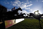 Pic Kenny Smith ....... 20/01/06.Musselburgh Racing...... Another Club Royal ridden by S.J. Craine safely jumps the last to gon on and win in the third race.