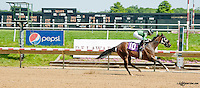 Cross Town Rival winning at Delaware Park on 6/20/13