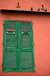 Three Pigeons sitting on a board above a closed window shutter. Colors are contrasting between the red wall and hte green window shutter.
