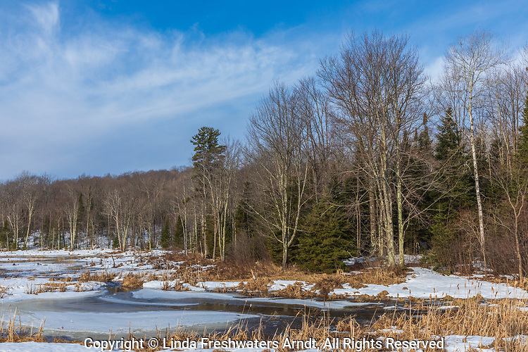 The transition from winter to spring in a wetland in northern Wisconsin.