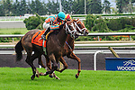 Conquest Harlanate(7) with Jockey Patrick Husbands aboard runs to victory at the Natalma Stakes at Woodbine Race Course in Toronto, Canada on September 13, 2014.