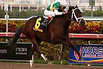 Dust and Diamonds with jockey John Velazquez up,  wins the Sugar Swirl Stakes (G3) handily at Gulfstream Park.  Hallandale Beach Florida. 12-08-2012