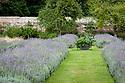 Lavender borders, Parham House, mid august.