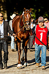 SEPT 06, 2021: VOLCANIC in the Gr.1 Hopeful  Stakes, for 2-year olds, going 7 furlongs, at Saratoga Racecourse, Saratoga Springs, New York. Sue Kawczynski/Eclipse Sportswire/CSM