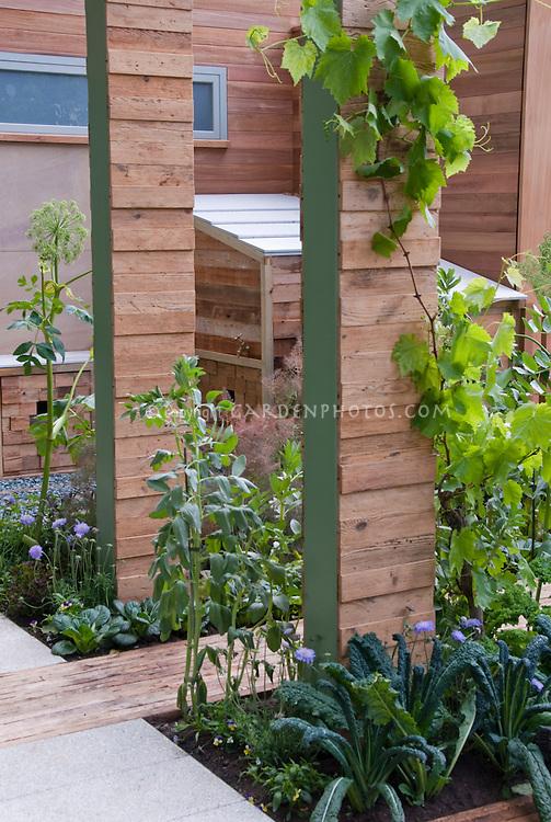 Front Garden Vegetables & Grapes