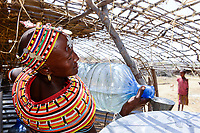 KENYA, Marsabit, Samburu village Merille, Samburu woman Ntina Lataraja with water plastic drum, water has to be collected in droughts from far distances by women / KENIA, Marsabit, Samburu Dorf Merille, Samburu Frau Ntina Lataraja, fuellt Wasser ab, Wasser muss in Duerrezeiten ueber weite Entfernungen von Frauen heran getragen werden