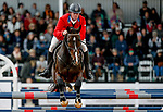 October 17, 2021: Will Faudree (USA), aboard Mama's Magic Way, competes during the Stadium Jumping Final at the 5* level during the Maryland Five-Star at the Fair Hill Special Event Zone in Fair Hill, Maryland on October 17, 2021. Jon Durr/Eclipse Sportswire/CSM
