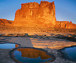 Arches National Park, UT<br /> The Organ illuminated by morning sun with reflections in vernal slickrock pools near Courthouse Wash