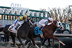 """It's a photo finish as the #9 """"Will Take Charge"""" and #4 """"Texas Bling"""" battling it out as they approach the finish line during the Smarty Jones stakes with #2 """"Always in a Tiz"""" not to far behind. Jan.21, 2013 - Hot Springs, Arkansas, U.S -   (Credit Image: © Justin Manning/Eclipse/ZUMAPRESS.com)"""