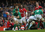 Ireland scrum half Conor Murray whips the ball away from the ruck..RBS 6 Nations.Wales v Ireland.Millennium Stadium.02.02.13.©Steve Pope-SPORTINGWALES