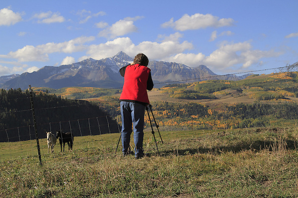 Older woman photographing Wilson Peak and horses, autumn, southwest Colorado.