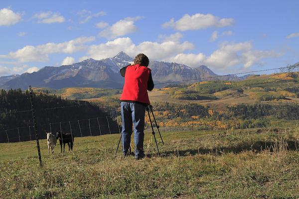 Older woman photographing Wilson Peak and horses, autumn, southwest Colorado.
