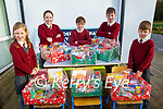 Knockaderry NS Farranfore students Aoibhínn Daly, Sinead Galvin , Diarmuid Casey, Padraig O'Sullivan and Liam Smyth who did a St Vincent de Paul hamper appeal at the school.<br />  .