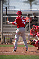 Cincinnati Reds second baseman Phil Gosselin (46) during a Minor League Spring Training game against the Los Angeles Angels at the Cincinnati Reds Training Complex on March 15, 2018 in Goodyear, Arizona. (Zachary Lucy/Four Seam Images)