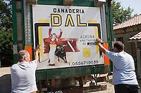 Europe/France/Aquitaine/40/Landes/ Aire-sur-Adour: Embarquement des vaches pour une course landaise à la Ganaderia DAL -AGRUMA // France, Landes, Aire sur Adour, Ganaderia Dal Agruma farm, cows are taken to a bullfight