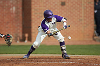 Travis Holt (8) of the High Point Panthers lays down a bunt against the Campbell Camels at Williard Stadium on March 16, 2019 in  Winston-Salem, North Carolina. The Camels defeated the Panthers 13-8. (Brian Westerholt/Four Seam Images)