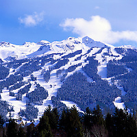 Blackcomb Mountain Ski Runs, Whistler Ski Resort, BC, British Columbia, Canada, Winter