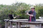 A tourist snaps a picture of an ahinga on the Ahinga Trail at Royal Palm, near the Ernest F. Coe Visitor Center in the Everglades National Park in Florida.