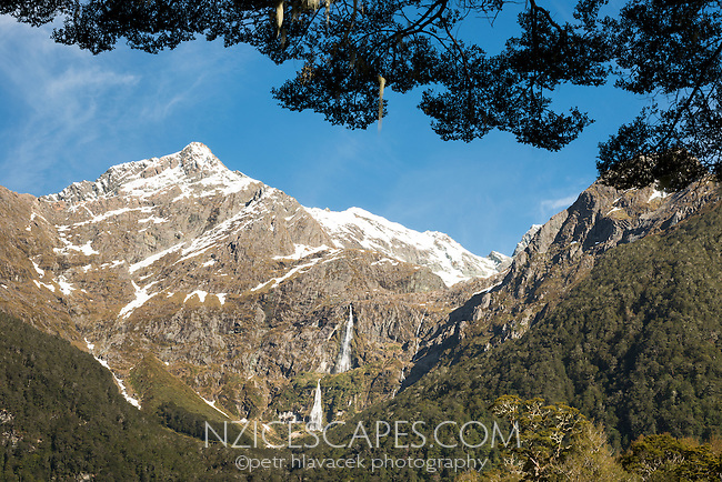 Humboldt Mountains with Somnus 2293m and Bridal Veil Falls fringed with beech forest in foreground, Mount Aspiring National Park, Central Otago, New Zealand, NZ