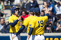 Michigan Wolverines third baseman Drew Lugbauer (17) is greeted by his teammates after scoring against the Illinois Fighting Illini during the NCAA baseball game on April 8, 2017 at Ray Fisher Stadium in Ann Arbor, Michigan. Michigan defeated Illinois 7-0. (Andrew Woolley/Four Seam Images)