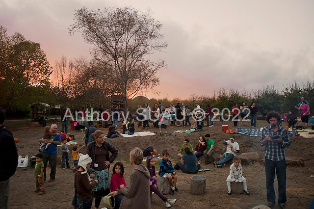 Watsonville, California<br /> October 19, 2012<br /> <br /> Live Earth Farm owner Tom Broz holds one of three annual harvest festivals for the farms 700+ community supported agriculture (CSA) members and community friends. The food is delicious and the evening warm as dozens of children explore.