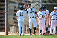 Dartmouth Big Green Hayden Rappoport (20) high fives Cole O'Connor (33) after scoring a run during a game against the Villanova Wildcats on March 3, 2018 at North Charlotte Regional Park in Port Charlotte, Florida.  Dartmouth defeated Villanova 12-7.  (Mike Janes/Four Seam Images)