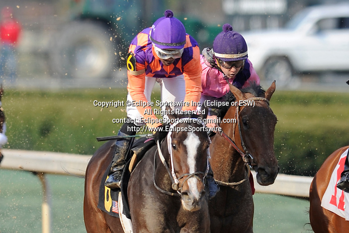#6 Euphrosyne with jockey Ricardo Santana, Jr. aboard during the running of the Honeybee Stakes (Grade III) at Oaklawn Park in Hot Springs, Arkansas-USA on March 8, 2014. (Credit Image: © Justin Manning/Eclipse/ZUMAPRESS.com)