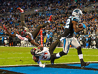 Carolina Panthers vs. Carolina Panthers vs. Tampa Bay Buccaneers, during their NFL game Sunday afternoon January 3, 2016, at Bank of America Stadium in Charlotte, North Carolina.<br /> <br /> Charlotte Photographer: PatrickSchneiderPhoto.com