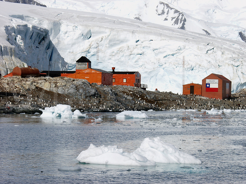 A penguin rookery at the Gonzalez Videla station (base) on Waterboat Point near Paradise Harbor (aka Paradise Bay), Antarctica. The Videla station belongs to Chile. DCF