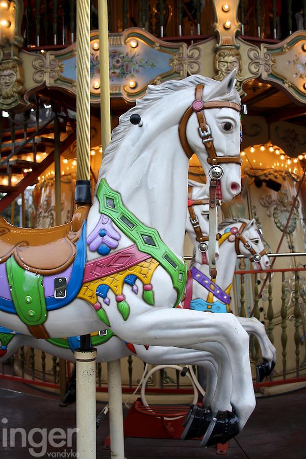 Carousel Horse in Paris, France