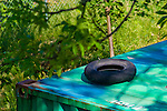 Single tire on top of a container sourrounded by green grass and branches.