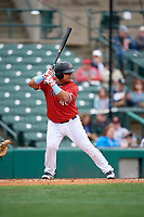 Rochester Red Wings Willians Astudillo (48) bats during an International League game against the Charlotte Knights on June 16, 2019 at Frontier Field in Rochester, New York.  Rochester defeated Charlotte 11-5 in the first game of a doubleheader that was a continuation of a game postponed the day prior due to inclement weather.  (Mike Janes/Four Seam Images)