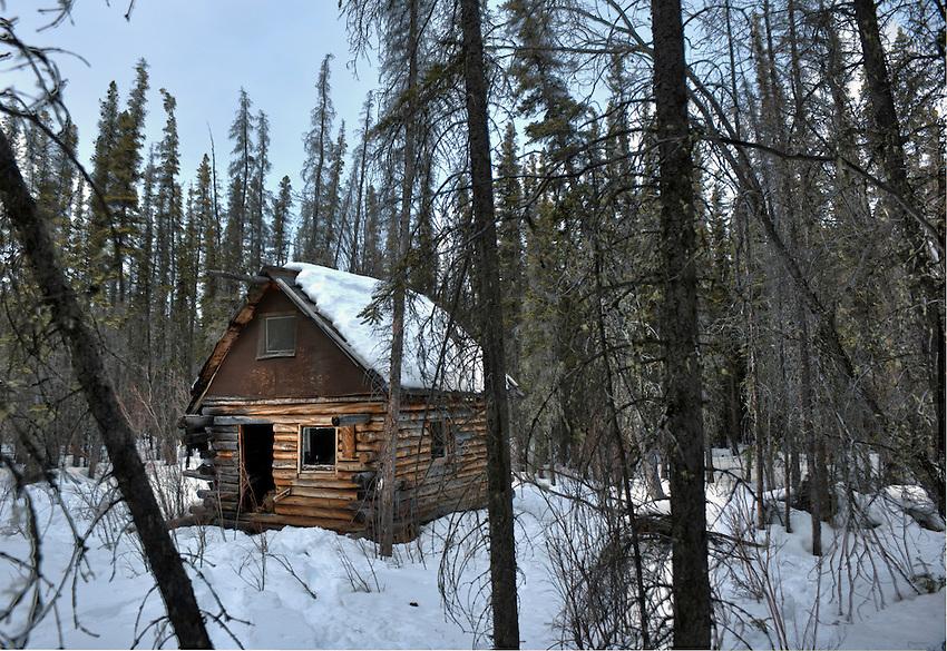 Abandoned cabin outside Copper Center, Alaska.