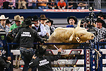 JB MAUNEY (1) in action during the Professional Bull Riders, Iron Cowboy V bull riding event, at the AT & T stadium in Arlington, Texas.