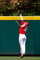 Alex Castellanos (18) of the Springfield Cardinals makes a leaping catch on a hard hit ball to center field during a game against the San Antonio Missions on May 30, 2011 at Hammons Field in Springfield, Missouri.  Photo By David Welker/Four Seam Images