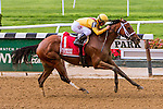 New York, NY - MAY 14: Covorting , #1  with Javier Castellano aboard. wins 40th running the Ruffian Stakes at Belmont Park on May 14, 2016, in Elmont, NY. (Photo by Sue Kawczynski/Eclipse Sportswire/Getty Images)
