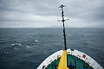 The Akademik Shokakskiy, sails through the North Atlantic from Iceland to Greenland. The ship was carrying members of the Cape Farewell Youth Expedition organized by the British Council of Canada.