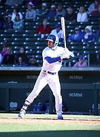 Alfonso Rivas - Chicago Cubs 2020 spring training (Bill Mitchell)