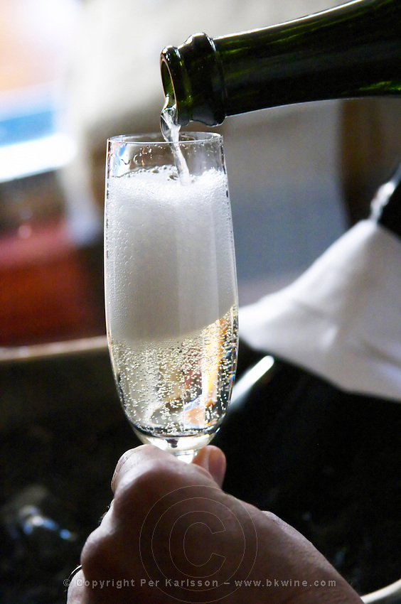 Champagne glass flute filled with sparkling bubbling foaming frothing Brut Xero Cuvee Dogma Domaine St Diego Bodega Winery The O'Farrell Restaurant, Acassuso, Buenos Aires Argentina, South America