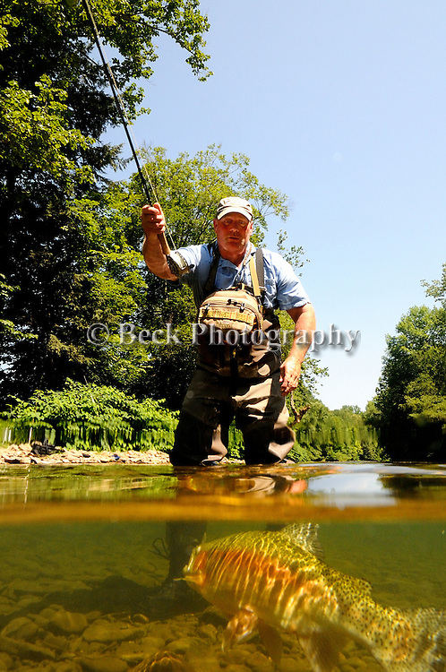 CATCHING A RAINBOW TROUT UNDERWATER