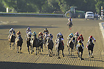 Nov. 03, 2012 - Arcadia, California, U.S -Trinniberg (second from right) ridden by Willie Martinez and trained by Shivananda Parbhoo, wins the Xpressbet Breeders' Cup Sprint at Santa Anita Park in Arcadia, CA. (Credit Image: © Jimmy Jones/Eclipse/ZUMAPRESS.com)