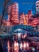 Assaf, LANDSCAPES, LANDSCHAFTEN, PAISAJES, photos,+Bridge, Buildings, Capital Cities, Central Park, City, Cityscape, Color, Colour Image, Dusk, Evening, Illuminated, Lake, Ligh+ts, Manhattan, New York, Night, Outdoors, Park, Photography, Pond, Sky, Skyline, Skyscrapers, Spring, Tree, Trees, Turtle Pon+d, Twilight, Urban Scene, Water,Bridge, Buildings, Capital Cities, Central Park, City, Cityscape, Color, Colour Image, Dusk,+Evening, Illuminated, Lake, Lights, Manhattan, New York, Night, Outdoors, Park, Photography, Pond, Sky, Skyline, Skyscrapers,+,GBAFAF20131119L,#l#, EVERYDAY