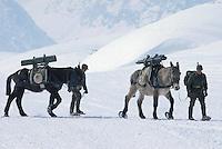 - mountain troops of Taurinense brigade during winter training at Col Busson (Susa valley)....- alpini della brigata Taurinense durante esercitazione invernale a  Col Busson (Val di Susa)..