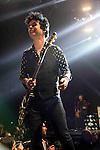 Billie Joe Armstrong - Green Day en concert a l'AccorHotels Arena a Paris