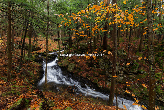 Chesterfield Gorge Natural Area, Chesterfield, New Hampshire, USA
